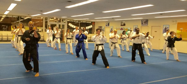 Adult & Teen Karate Lesson – Elmwood Park, IL