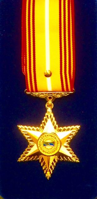 kukkiwon-world-tae-kwon-do-headquarters-international-advisory-board-medal
