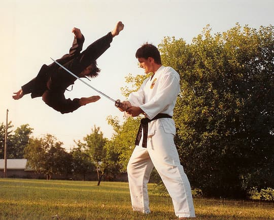 Private Martial Arts Lessons – Oak Park, River Forest, IL