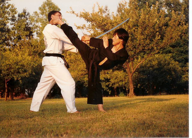karate-lessons-master-s-h-yu-20