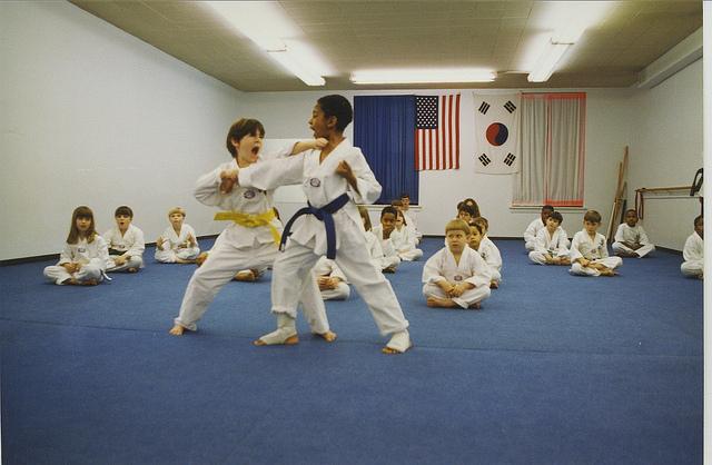 kids Karate - Riverside IL