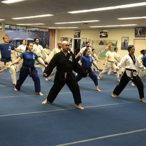 Adult-Martial-Arts-Oak-Park-River-Forest-IL