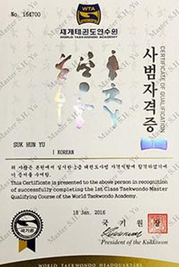 Kukkiwon World Tae Kwon Do Academy 1st Class Tae Kwon Do Master