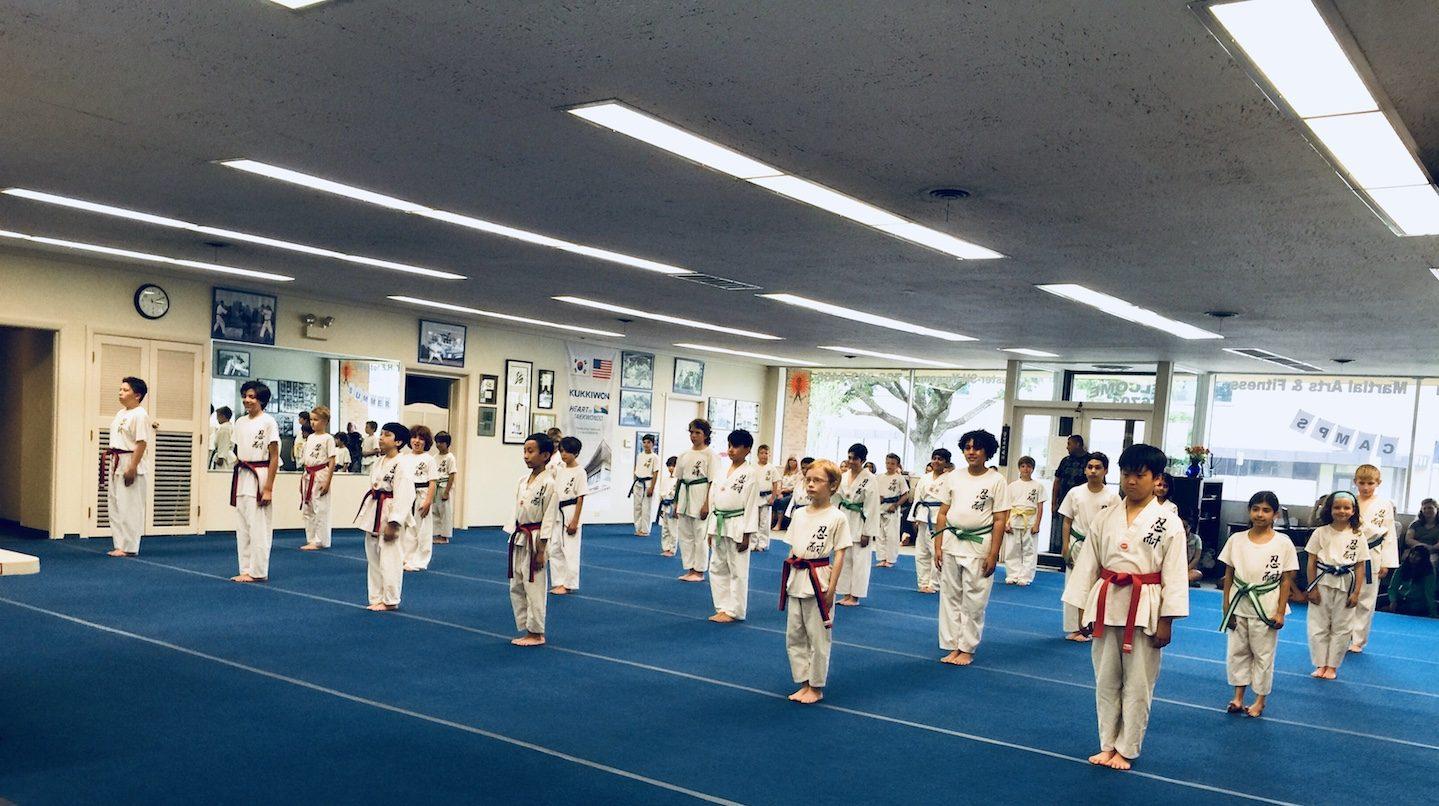 Kids Martial Arts Oak Park IL