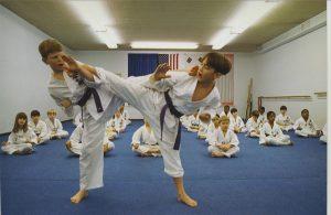 Kids Karate Classes – Berwyn, IL