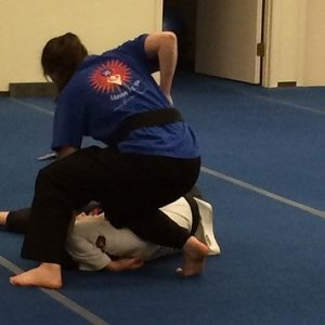 Aikido-hapkido Moves