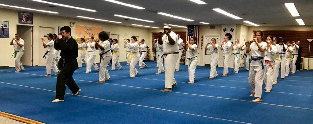 Tae Kwon Do Classes for Elmwood Park, IL
