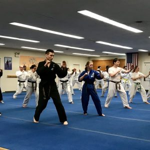 Karate Classes - Oak Park, River Forest - Martial Arts Schools