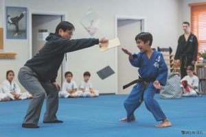 Martial Arts Program