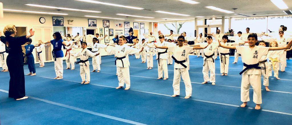 Kids Martial Arts Classes Oak Park