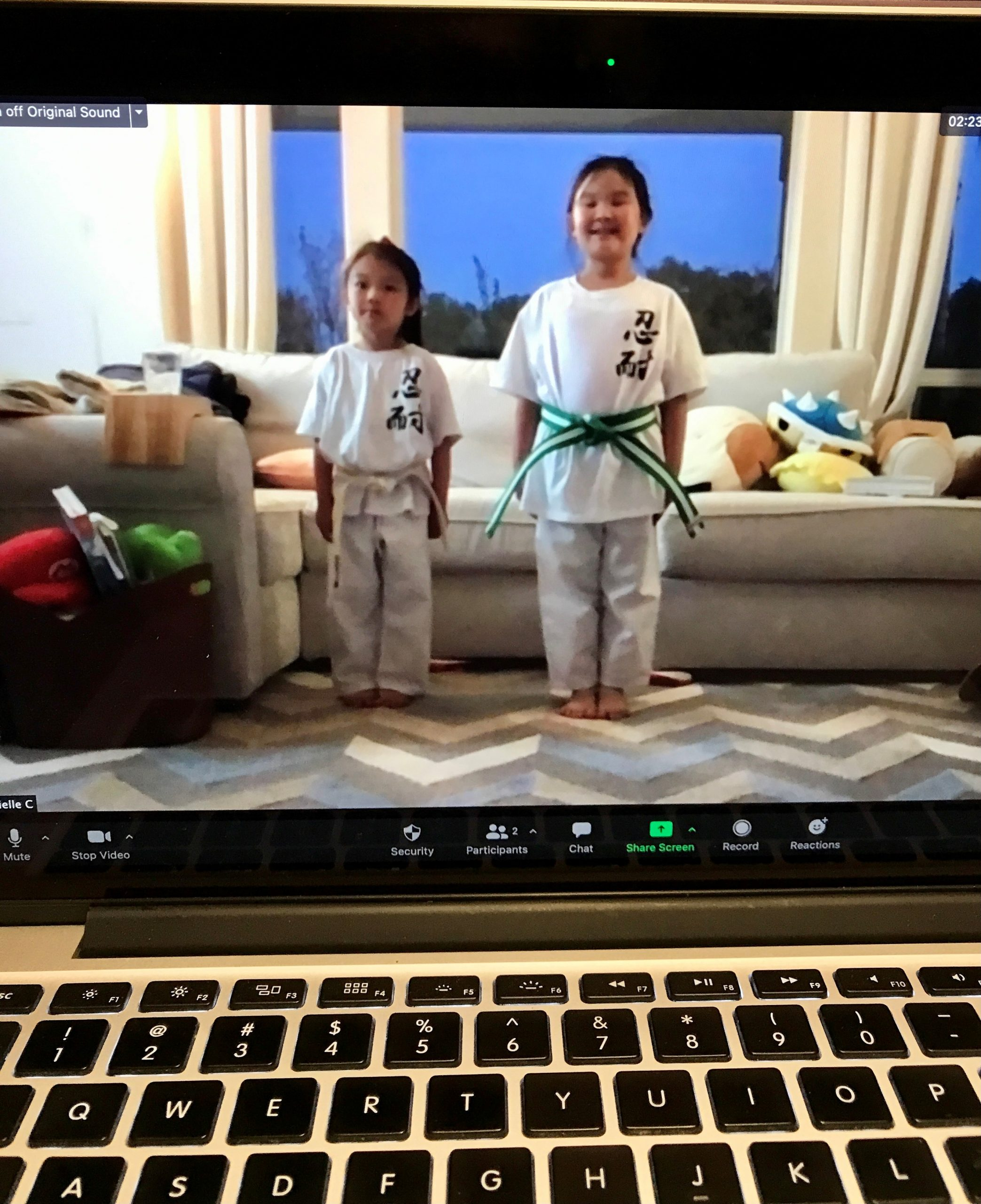 Martial Arts Students Training At Home
