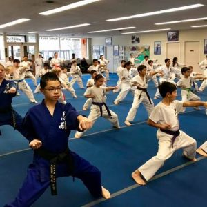 Martial Arts Students Oak Park IL