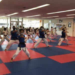 Martial Arts Belt Promotions & Essays